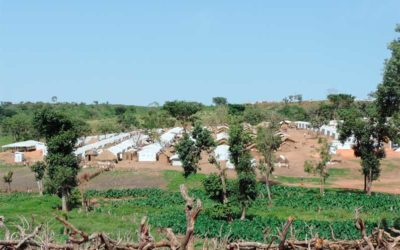 Environmental assessment of humanitarian assistance (Cameroon)