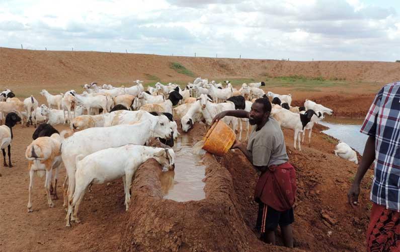 Climate change resilience and livelihoods (Kenya)